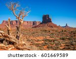 Small photo of Dormant tree in Monument Valley with the East Mitten Butte in the background. The East Mitten Butte looks like a hand, yet it signifies a spiritual being watching over.