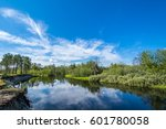 on the river | Shutterstock . vector #601780058