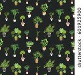 Vector House Tropical Palm...