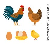 set of chicken  rooster  eggs.... | Shutterstock .eps vector #601941350