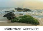 Rocks  Seaweed Beach