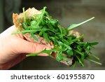 vegan burger  | Shutterstock . vector #601955870