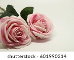 Stock photo pink rose isolated on white background 601990214