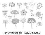 set of vector different types... | Shutterstock .eps vector #602052269