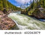 Forest wild river landscape. Rapids stream water