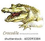 watercolor crocodile on the...   Shutterstock . vector #602093384