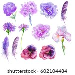 Set Watercolor Flowers Feather...