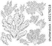 hand drawn underwater natural... | Shutterstock .eps vector #602178218