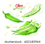 watercolor collection of... | Shutterstock . vector #602185964