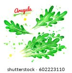 watercolor collection of... | Shutterstock . vector #602223110