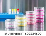 cancer research equipment | Shutterstock . vector #602234600