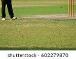 cricket umpire beside cricket...   Shutterstock . vector #602279870