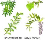 illustration with spring... | Shutterstock .eps vector #602370434