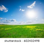 green field with flowers under... | Shutterstock . vector #602432498