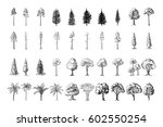 silhoutte of trees on a white... | Shutterstock .eps vector #602550254