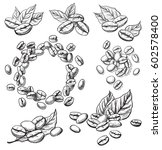 coffee grains and leaves in... | Shutterstock .eps vector #602578400
