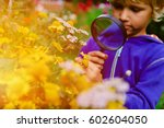 kids learning   little boy... | Shutterstock . vector #602604050