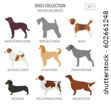 hunting dog breeds collection... | Shutterstock .eps vector #602661248