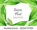 watercolor bay leaves... | Shutterstock . vector #602674784