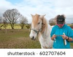 Small photo of Owner reading the instructions before administering a wormer to her horse