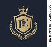 pe logo | Shutterstock .eps vector #602837930