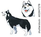 siberian husky cartoon vector... | Shutterstock .eps vector #602847278