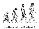 human evolution  hand drawing | Shutterstock .eps vector #602939624