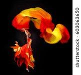 Acrobat Dancing Woman Ballerin...