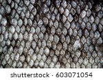 fish skin scales detailed macro ... | Shutterstock . vector #603071054