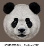 portrait of a panda bear wild... | Shutterstock . vector #603128984