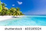 idyllic tropical beach... | Shutterstock . vector #603185024