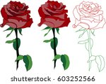 red rose  eps10  | Shutterstock .eps vector #603252566