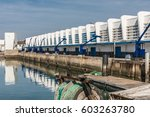 the fish auction in the port of ... | Shutterstock . vector #603263780