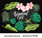 ink hand drawn set of tropical... | Shutterstock .eps vector #603267938