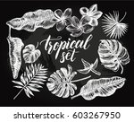 ink hand drawn set of tropical... | Shutterstock .eps vector #603267950