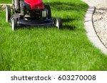 lawn mower on green grass    Shutterstock . vector #603270008