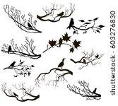 vector set of birds at trees... | Shutterstock .eps vector #603276830