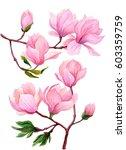 watercolor set of magnolia... | Shutterstock . vector #603359759
