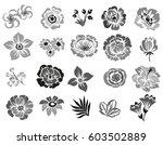 flower set | Shutterstock . vector #603502889