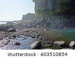 coastal rocks trees and a spray ... | Shutterstock . vector #603510854