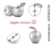 apple vector set hand drawing | Shutterstock .eps vector #603583136