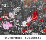 meadow with poppies | Shutterstock . vector #603605663