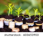 coins with sprouts on soil... | Shutterstock . vector #603653903