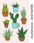 set vector of houseplants in... | Shutterstock .eps vector #603736988
