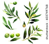 olive tree in a watercolor... | Shutterstock . vector #603749768