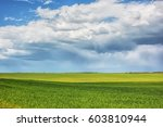 rural landscape   meadows with... | Shutterstock . vector #603810944