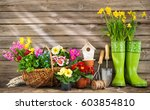 gardening tools and spring... | Shutterstock . vector #603854810