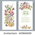 vector herbal cosmetics... | Shutterstock .eps vector #603860600