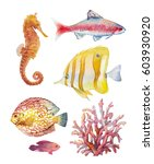 watercolor tropical fish and... | Shutterstock . vector #603930920
