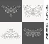 minimalistic butterflies design ... | Shutterstock .eps vector #603980258